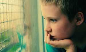Как научить ребенка учиться самостоятельно с удовольствием и желанием ходить в школу
