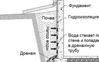 Уровни построения движений по Н. А. Бернштейну