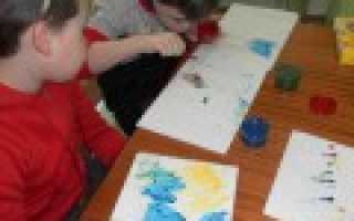 Организация психолого-педагогического сопровождения детей с ОВЗ