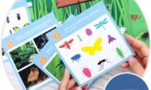 35 тематических карточек для родителей по лексическим темам