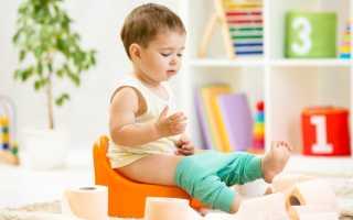 """Как приучить ребенка к горшку: все методы в 1,2,3 года по Комаровскому, за 7 дней по системе """"Довольный малыш"""""""