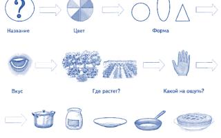 Конспект логопедического занятия в старшей группе ОНР