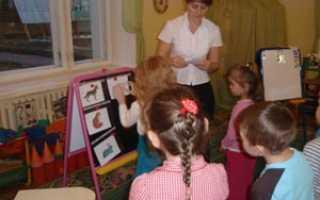 Домашние животные – конспект занятия в старшей логопедической группе
