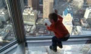 Как научить ребенка не бояться высоты